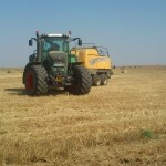 agricultura-300x336