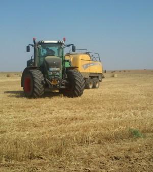 Alargamento do prazo de candidatura para os pagamentos diretos da agricultura