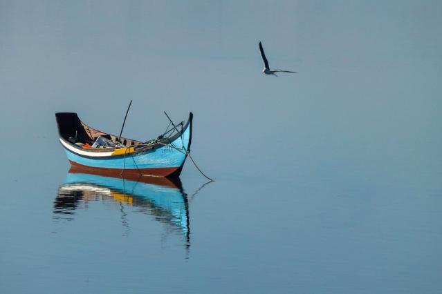 """Concurso de fotografia – Maio: """"Rio silencioso"""" de Cláudia Batista"""
