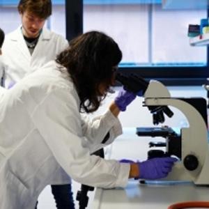 Novo Espaço Europeu da Investigação e da Inovação
