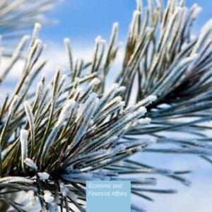 Previsões económicas do inverno de 2021: Um inverno difícil, mas uma luz ao fundo do túnel